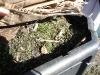 10-couvrir-le-compost.jpg