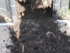 08-compost.jpg