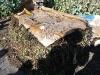 02-compost-en-tas.jpg