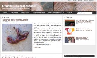 blog-bois-image.png
